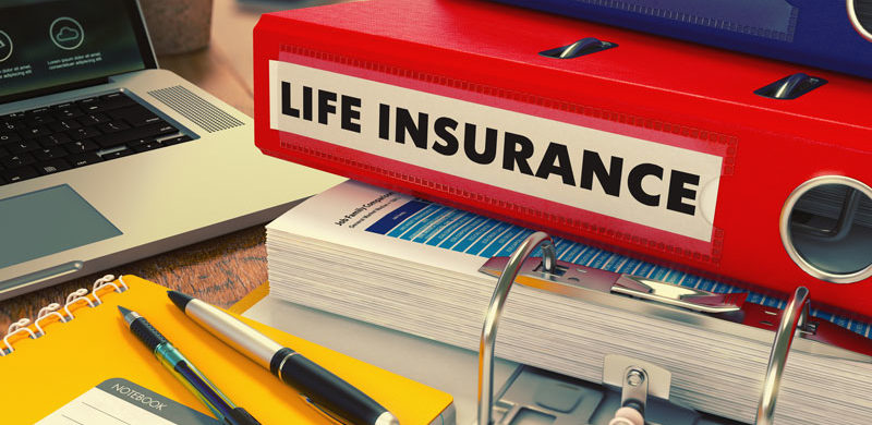 Life Insurance: The Big Picture