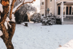 How to Protect Your Home's Exterior